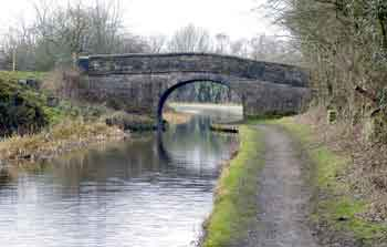 Excited peak forest canal idea and